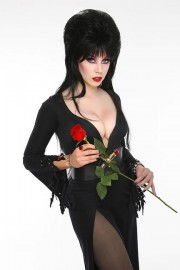 The Next Elvira