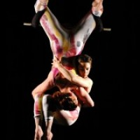 Arachne Aerial Arts - Balancing Act in Cincinnati, Ohio