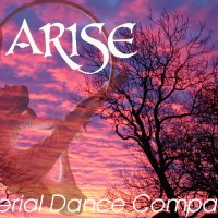 ARISE Aerial Dance Company - Aerialist / Sports Exhibition in Los Angeles, California