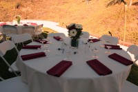 Ashleys Party Rentals - Linens/Chair Covers in ,