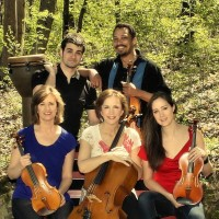 Avalare Strings - Celtic Music in Trenton, New Jersey