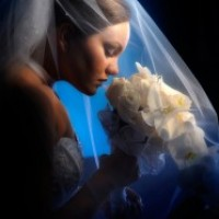 Award Winning Sunflowers Studios Photography - Wedding Photographer in Freeport, New York