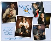 The Barry Sea Paradox - Blues Band in Alexandria, Louisiana