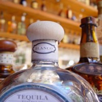Bay Area Bartenders - Flair Bartender in San Francisco, California