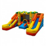 Dual waterslide Bounce house combo