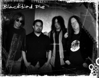Blackbird Pie - Blues Band in Houston, Texas