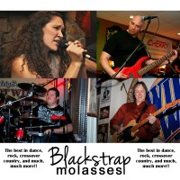 Blackstrap Molasses - Cover Band in Burlington, North Carolina
