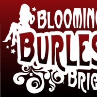 Bloomington Burlesque Brigade (B3) - Cabaret Entertainment in Indianapolis, Indiana