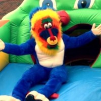 Blue Baboons Funtime Events, Inc. - Bounce Rides Rentals in Martinsville, Virginia