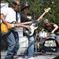 Bramble Brothers - Rock Band in Mukilteo, Washington