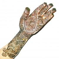 BridalMehndis - Henna Tattoo Artist in Trenton, New Jersey