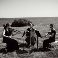 Brilliante Strings - String Quartet in Napa, California