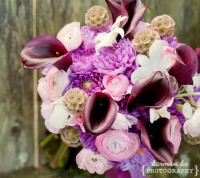 Bumble Bee Landing - Wedding Florist in ,