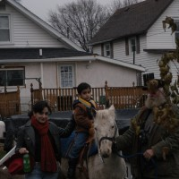 Butch's Ponies Ride - Pony Party / Horse Drawn Carriage in Poland, Indiana