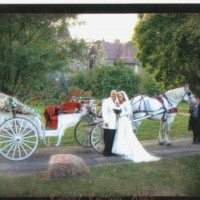 Camelot Carriage Rides - Horse Drawn Carriage in Lima, Ohio