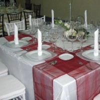 Careli Party Rentals and Balloons - Tent Rental Company in Greensboro, North Carolina