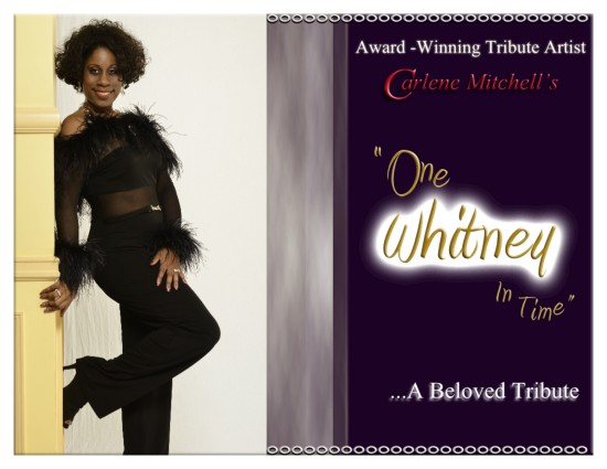 """One Whitney In Time"" Poster"