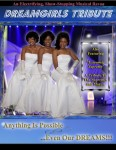 Dreamgirls Tribute Poster- New