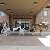 Carriages of Colorado - Event Services in Longmont, Colorado