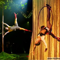 Catherine Viens - Circus & Acrobatic in Mont-Royal, Quebec