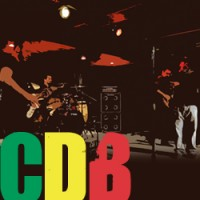 CDB (Chris DaSilva Band) - Reggae Band in Edison, New Jersey