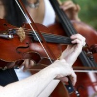 Celebration Musicians - Viola Player in Fort Lauderdale, Florida