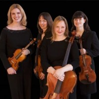 Celestial Strings - String Quartet in Crystal Lake, Illinois