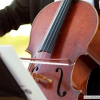 Chandler String Quartet - Classical Music in Fountain Hills, Arizona