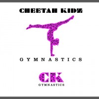 Cheetah Kidz Gymnastics - Party Rentals in Warren, Michigan