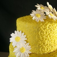 Christina's Custom Cakes - Event Services in Aberdeen, Washington