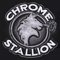 Chrome Stallion - Classic Rock Band in Bartow, Florida