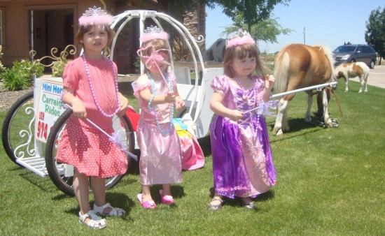 My Little Princess Party