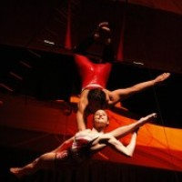 Circo Rose Entertainment - Aerialist in Racine, Wisconsin