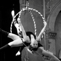 Cirque Oya - Aerialist in Reading, Pennsylvania