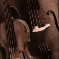 Clarksville Strings - Viola Player in Madisonville, Kentucky