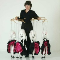 Clement McCrae Puppet Shows - Children's Party Entertainment in Kansas City, Kansas
