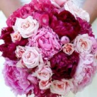 Cloud Nine Wedding Officiants - Unique & Specialty in Goleta, California