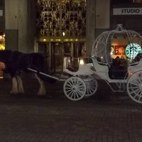 Country Carriage Company - Horse Drawn Carriage in Marion, Ohio