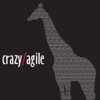 Crazy/Agile - Wedding Band in Decatur, Illinois