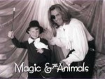 magic with animals