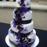 Custom Cake Studio - Cake Decorator in Orlando, Florida