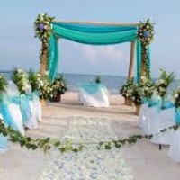 Danielle's Event  Planning - Event Planner in High Point, North Carolina