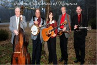 Darlene & Reflections of Bluegrass - Cajun Band in Columbia, South Carolina