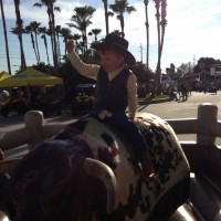 Dave The Bull Guy - Carnival Rides Company in Jacksonville, Florida
