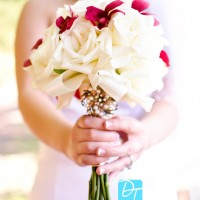 David Thao Photography - Event Services in Stevens Point, Wisconsin