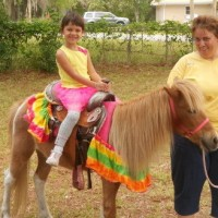Deb's Party Ponies - Reptile Show in Gainesville, Florida