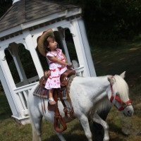 Decorated Ponies for Parties & Petting zoo too! - Petting Zoos for Parties in Philadelphia, Pennsylvania