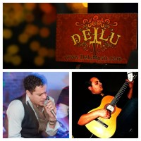 DELU - Latin Acoustic Trio - Latin Jazz Band in Glendale, California