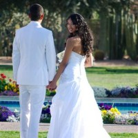 Desert Light Weddings - Horse Drawn Carriage in Chandler, Arizona