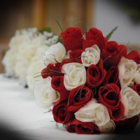 Designer Events & Weddings LLC - Event Services in Marshfield, Wisconsin